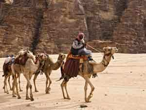Экскурсионные туры в Иордании