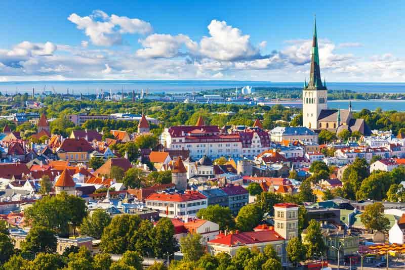 Живописная летняя панорама Старого города