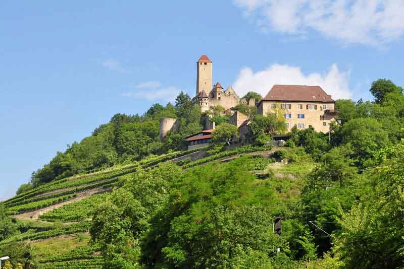 Замок в долине реки Некар