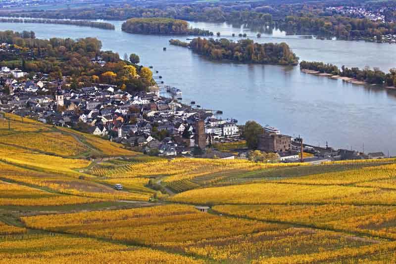 Вид на долину Рейна