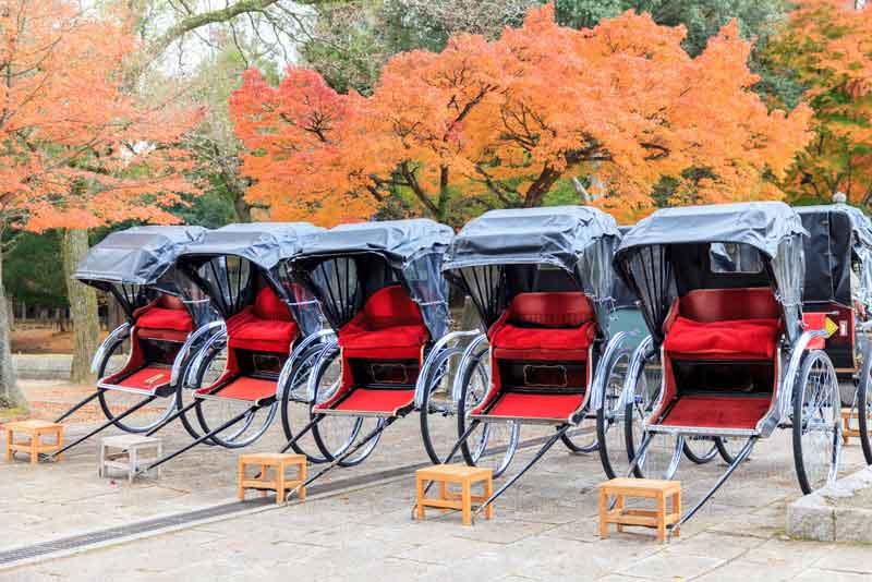 Рикши в парке